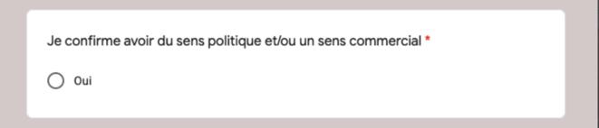 Extrait d'un formulaire de recrutement en ligne de militants pro-Zemmour © capture d'écran, via @_Osint