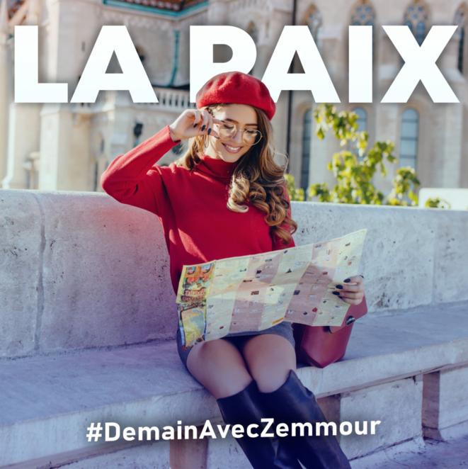 Campagne numérique pro-Zemmour © capture d'écran