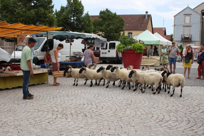 Rencontre au village © Commune du Val d'Ajol