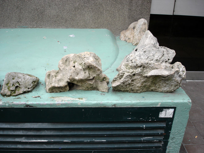 cailloux-roches-et-pierres-7