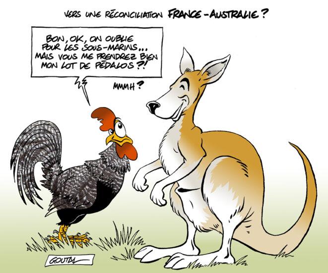 1-a-aa-coq-kangourou-ds