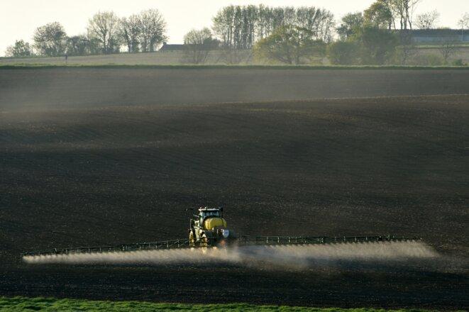 Épandage de glyphosate sur un champ de maïs, avril 2021. © Jean-François Monier / AFP