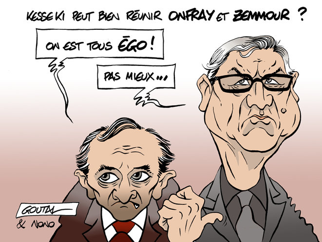 1-a-aa-onfray-zemmour-ds