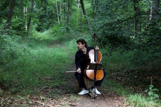Le Festival des forêts, entre musique et sylvothérapie