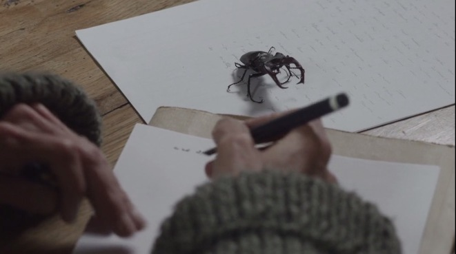 «La Capture», l'autre passion de Pierre Bergounioux