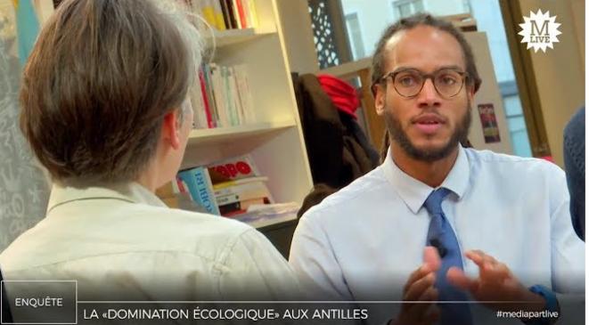 Chlordécone: un cas de «violence écologique» aux Antilles