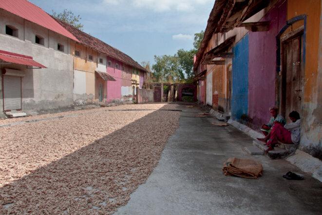 A Fort Kochi, en Inde, les mutations urbaines effacent l'histoire