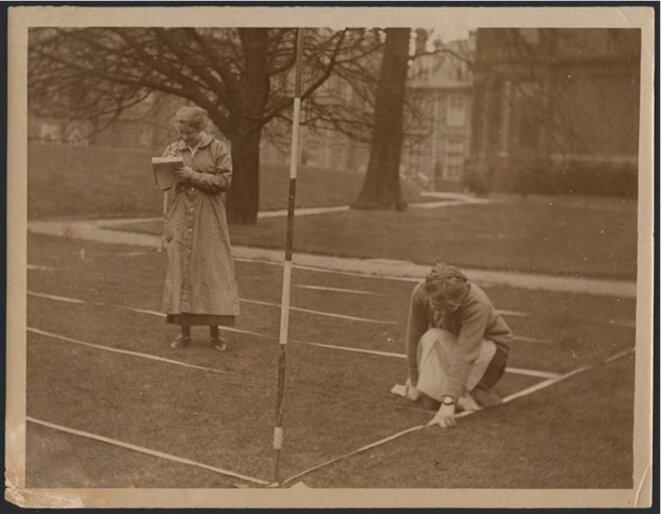 1914 : Femmes au travail