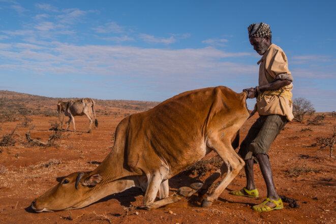 En Ethiopie, aux portes de la famine