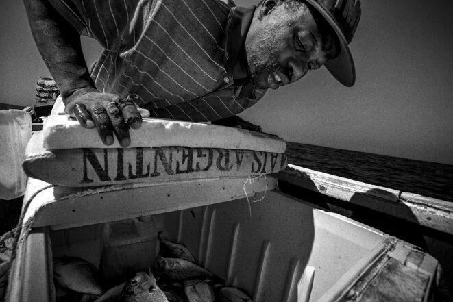 La tragique disparition de «l'or bleu» du Sénégal