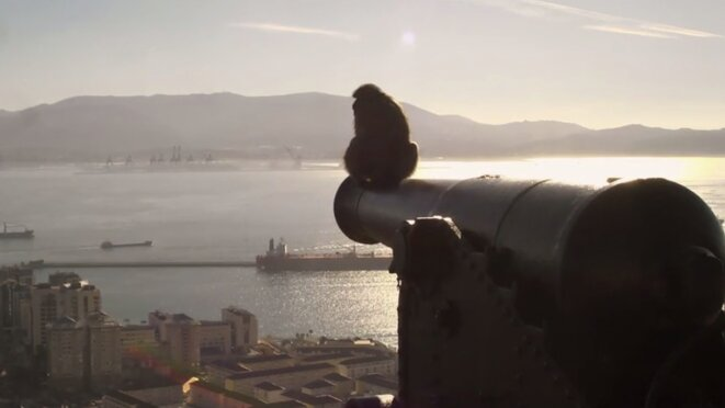 'Territory': the other dispute over Gibraltar
