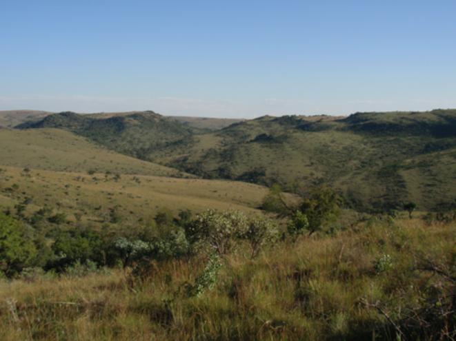 Le berceau de l'humanité, c'est ici: des vallées et des falaises, au relief sans doute moins accentué il y a 2 millions d'années © Paul Dirks