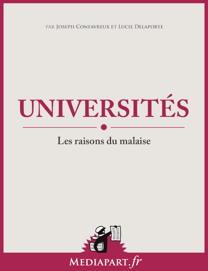 Université : les raisons du malaise