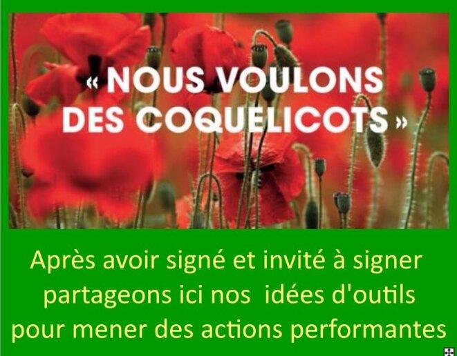 Partage d'outils pour les actions Coquelicots
