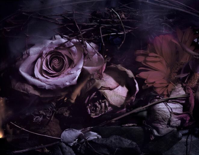 La chambre des fleurs