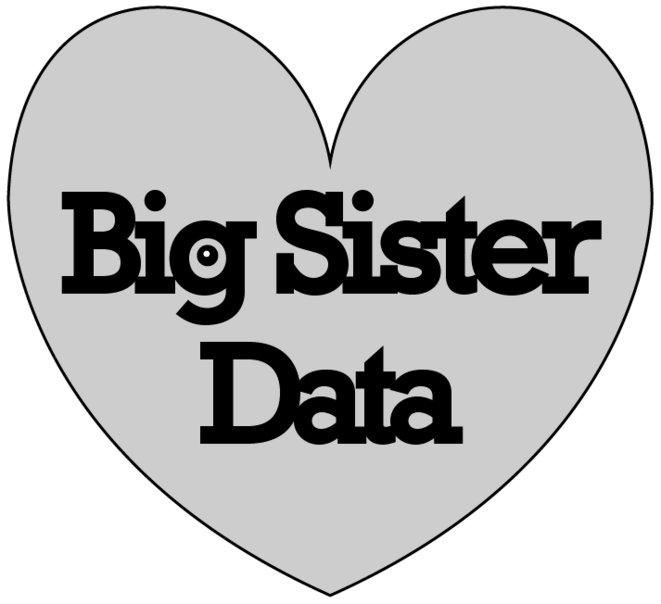 Bigsister Data