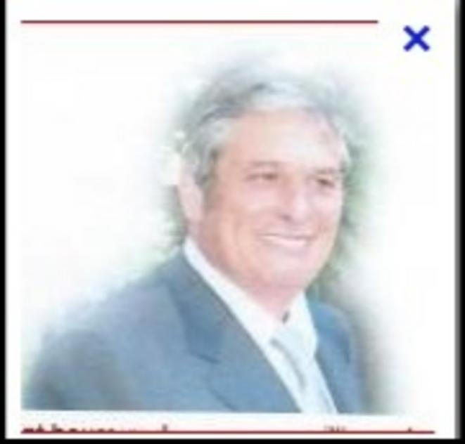 MICHEL MAZZOLENI