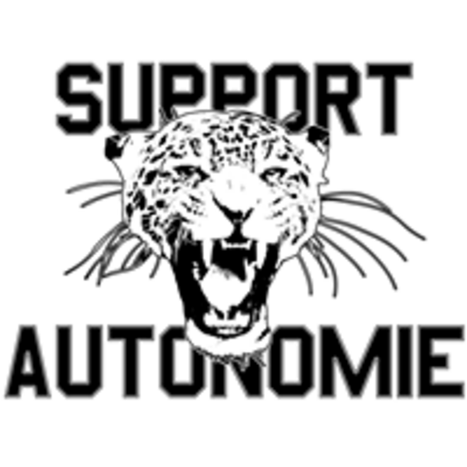 AutonoMIE 31