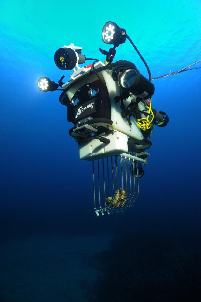 "Robot ""collecteur"" © Teddy Séguin Frédéric Osada DRASSM  Images Explorations"