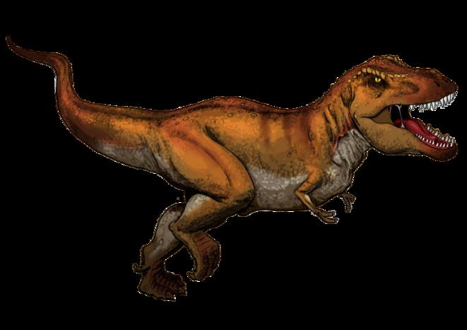 Tyrannosaurus rex © myfavoritedinosaur.com