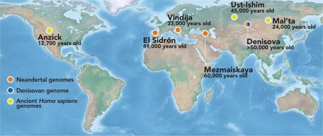 Carte des plus anciens génomes séquencés d'hommes modernes, de Néandertaliens et de Denisovans  © Bence Viola