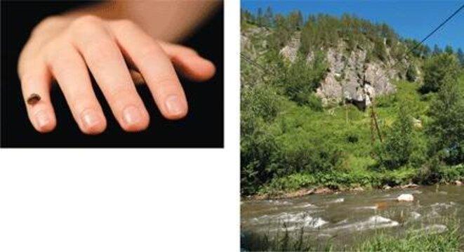 Le fragment de phalange (à gauche) retrouvé dans la grotte de Denisova (à droite)