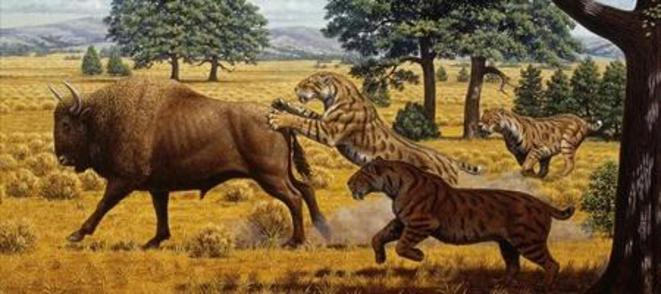 Tigres à dent de sabre et mammouth © Mauricio Anton