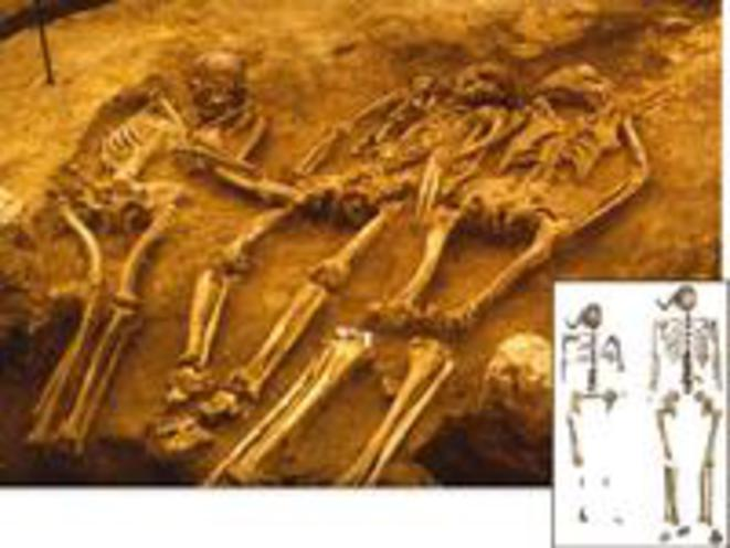 Fossiles de Dolni Vestonice (République tchèque) et d'Oberkassel (Allemagne) © S. Svoboda; J. Vogel/LVR-Landes Museum, Bonn
