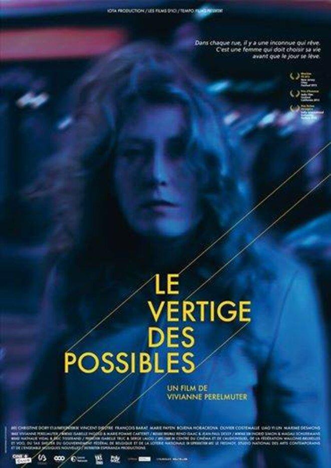 Le vertige des possibles de Viviane Perelmuter