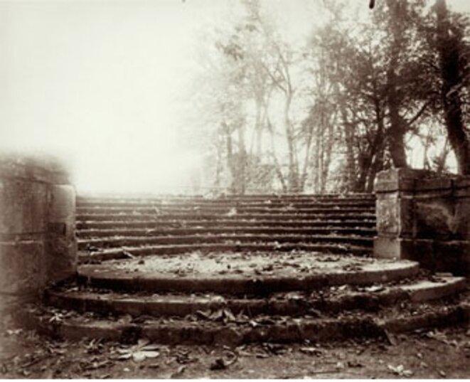 Parc de Saint-Cloud (1922) © Eugène Atget