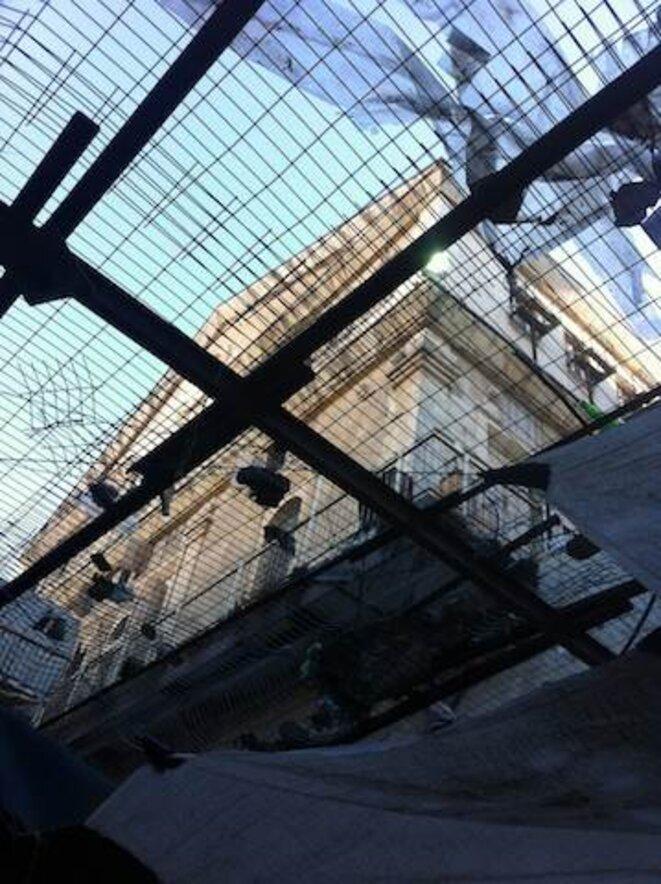 Grillages à Hébron