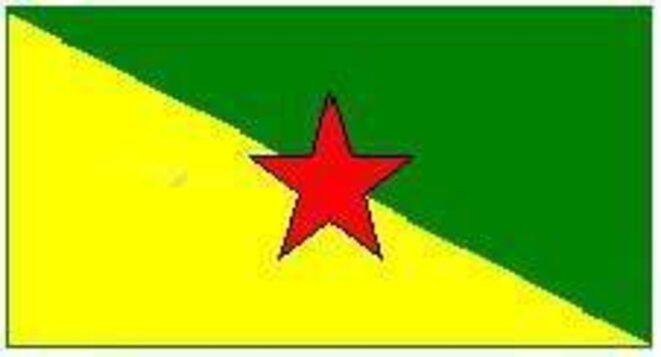 Bandera de la Guayana