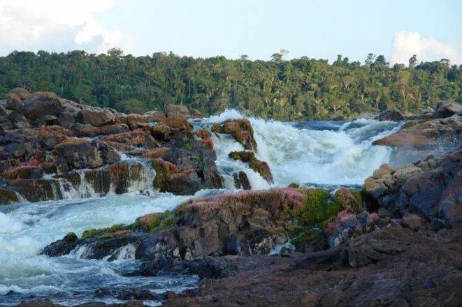 Chutes de Jericoá , Grand xingu, Pará, Amazonie, Brésil
