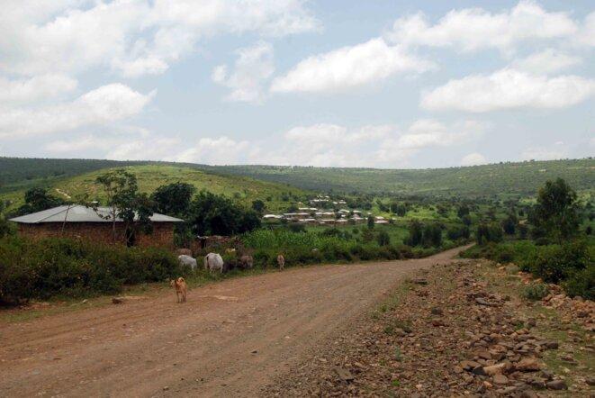 La piste en terre qui mène à l'usine.