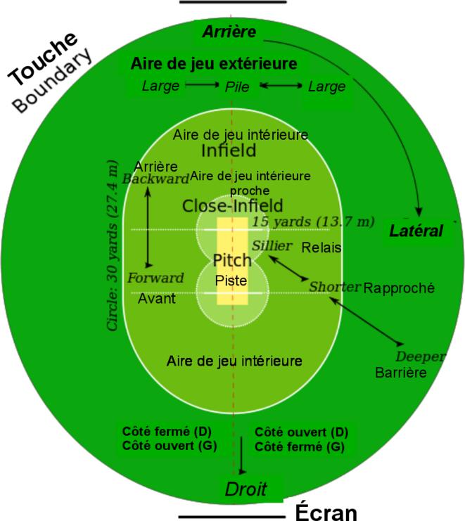 Terrain de cricket avec indication des zones