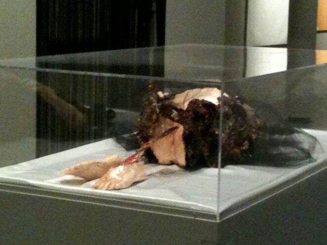 Doux cercueil de la chair - Laila Muraywid (IMA 2011) © Laila  Muraywid