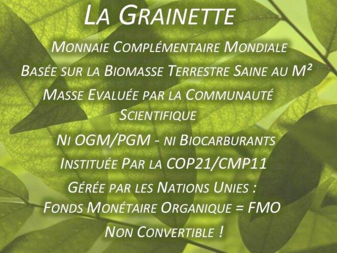 1ère Diapo synthétique : la Grainette c'est quoi ? © Hélène Nivoix