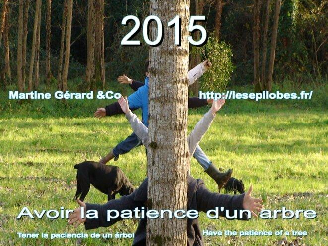 avoir la patience d'un arbre © gérard jacquemin
