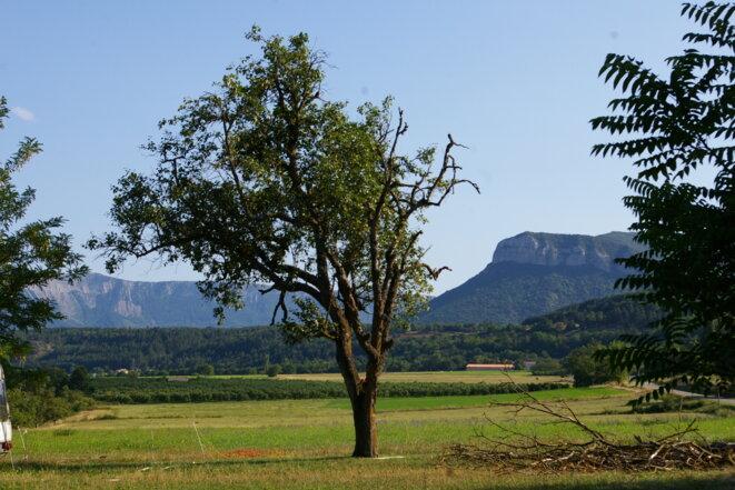 La Jachère - vue vers le sud © Marco Pol Avallon