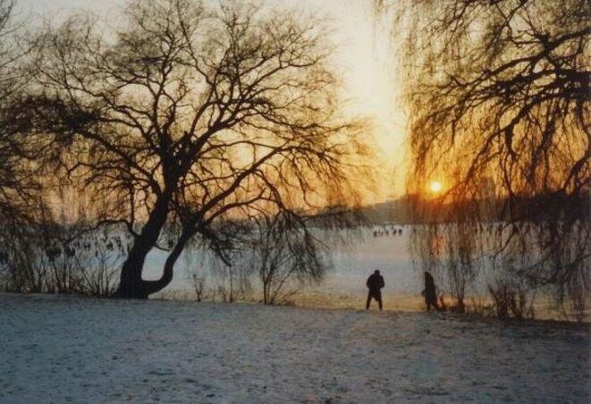 Alster gelée 1996 - Soleil couchant_ © Etoile66