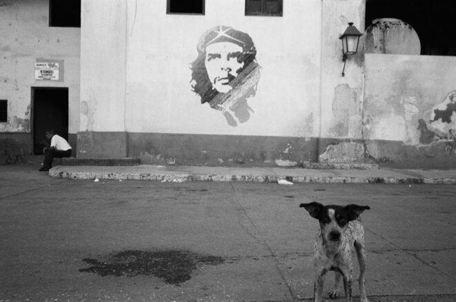 Le Che et le chien. Cuba, août 2007.