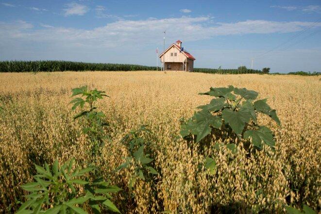 """Une grange """"passive"""", construite sur le tracé du pipeline dans les champs du Nebraska."""