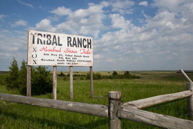 Un ranch en territoire sioux sur la réserve de Rosebud