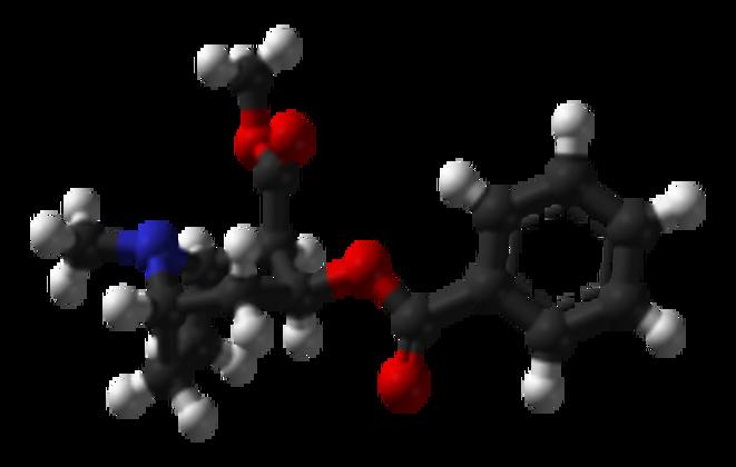 La molécule de la cocaïne
