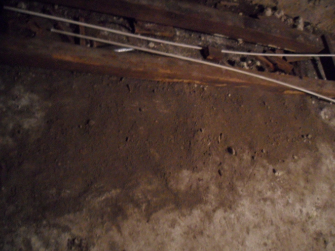 2e empreinte de pas et trou n°4 avec empreinte de patte © Justine F.