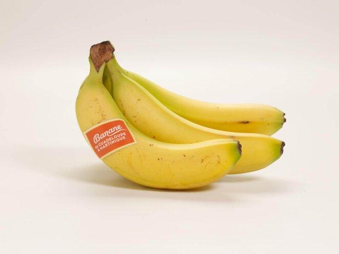 Banane de Guadeloupe & Martinique © ugpban