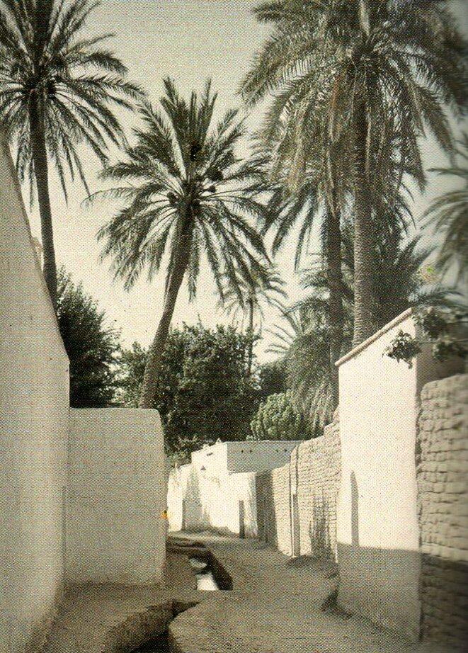 La Grande Seguia à Laghouat, Algérie, 1929 © Frédéric Gadmer