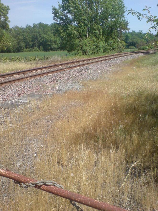 Désherbage chimique de voie ferrée sur la ligne longeant la Charente vers Saintes © Photo JC Mathias