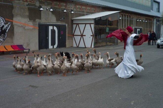 le Théâtre de l'unité cultivant les oies © Jean-Pierre Estournet