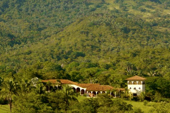 """La villa """"Palmera"""" de Jean-Philippe Couzi."""